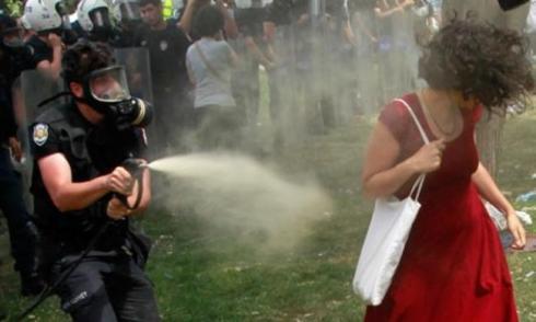 la mujer turca